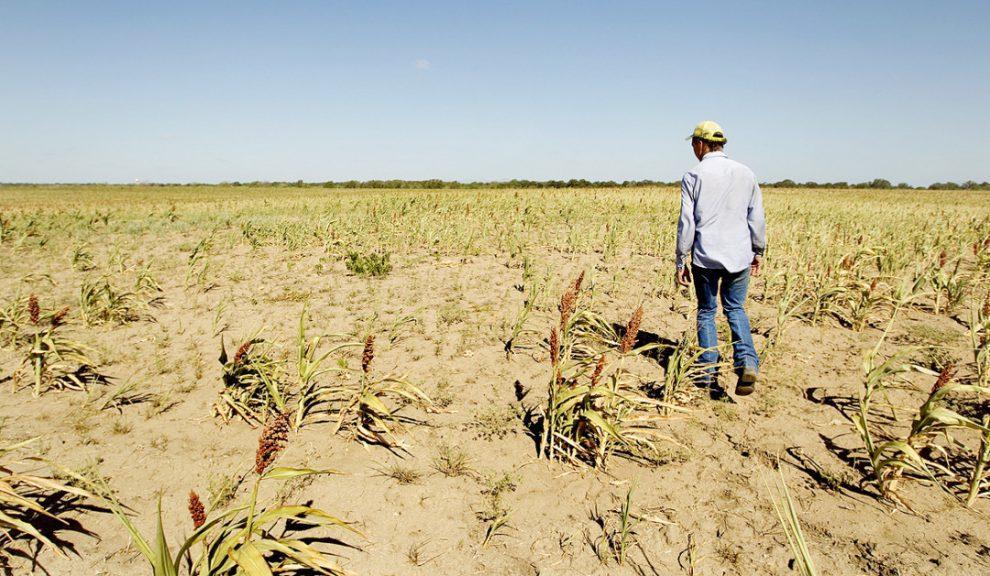 Texas-Drought-campesinos-sin-acceso-canasta-básica-UNAMGlobal