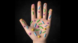 Bacterias-fundamentales-para-salud-UNAMGlobal