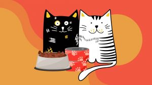 Editable-gatos-UNAMGlobal