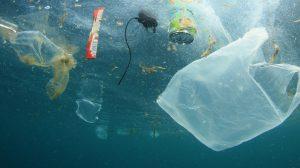 Plastic-news-grid-UNAMGlobalR