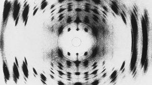 X-ray-doblan-alfabeto-de-la-vida-UNAMGlobalR