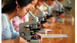 Las-mujeres-y-la-ciencia-UNAMGlobal