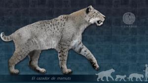tigre-dientes-cimitarra-habitó-territorio-mexicano-UNAMGlobal