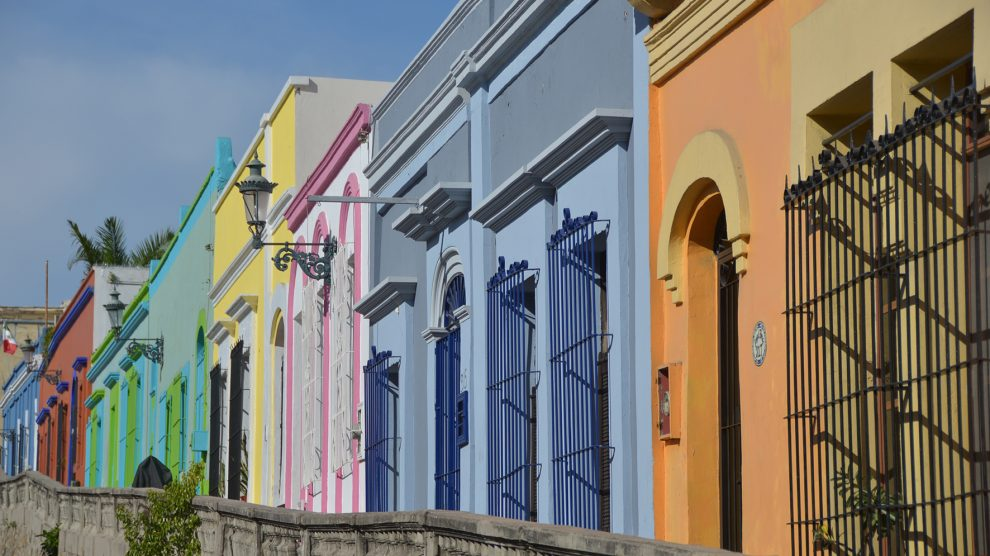 perla-Pacífico13-Mazatlán-ElPuma-Crestón-UNAMGlobal