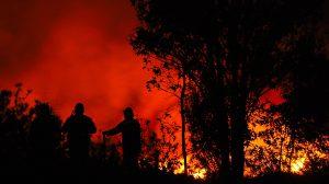 existen-incendios-activos-otros-proceso-liquidación-UNAMGlobal
