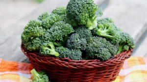 Broccoli-bueno-para-tí-UNAMGlobal
