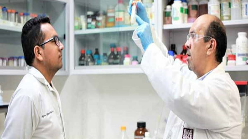 bioinsecticida-capaz-detener-mosquito-transmisor-dengue-Zika-UNAMGlobal