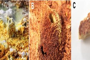 Dallol-microrganismos-habitan-región-más-calurosa-UNAMGlobal