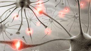Conexiones- neuronales-UNAMGlobal