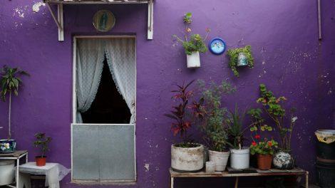 proyecto57-danza-vecindad-bailarines-convivencia-UNAMGlobal