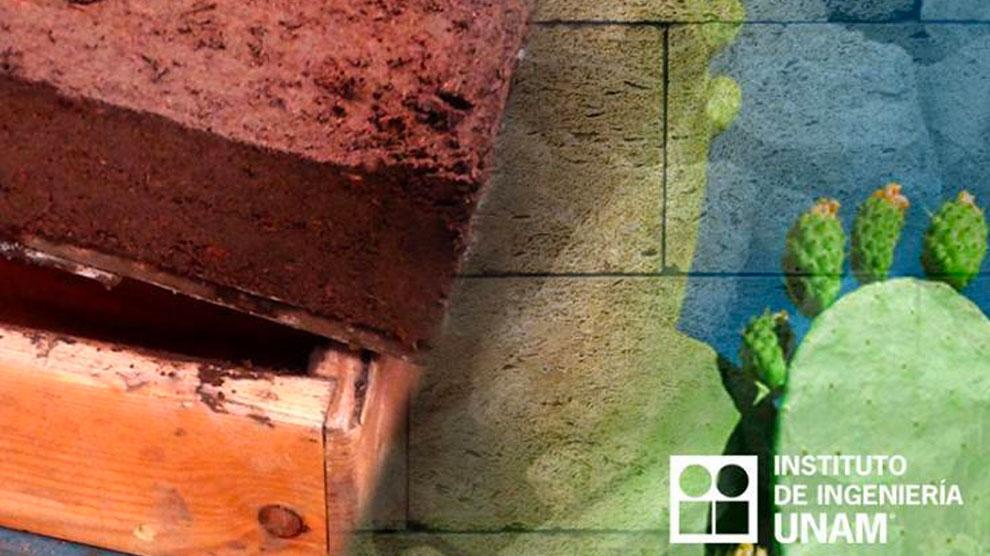 crean-ecoladrillos-menos-contaminantes-proceso-sustentable-UNAMGlobal