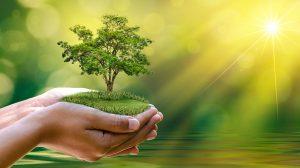día-mundial-medio-ambiente-UNAMGlobal