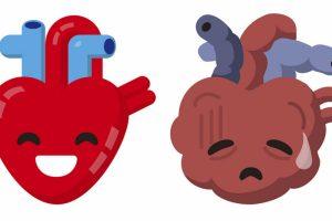 Corazón-miniproteínas-desbloqueando-células-UNAMGlobal