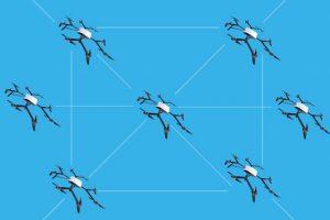 'Primer-Dron-cuántico'-ingeniería-china-UNAMGlobal