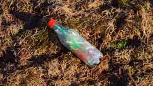 toneladas-plásticos-arriban-mar-contaminación-UNAMGlobal