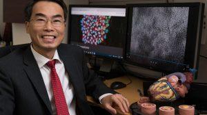 Joseph-Wu-tratamiento-para-condición-cardiaca-UNAMGlobal