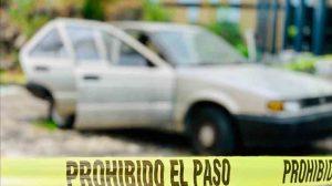 licenciatura-ciencias-forences-vocación-interdisciplinaria-UNAMGlobal