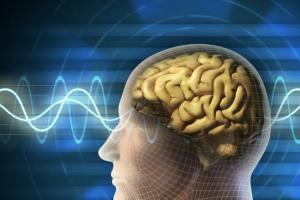 Capacidad-cognitiva-afectada-por-partículas-UNAMGloba