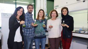 BIO-128-Algas-y-bacterias-descontaminar-aguas-UNAMGlobal