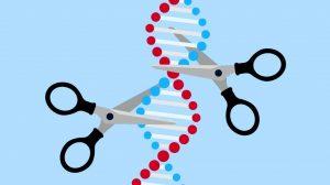 CRISPR-Cas9-tijeras-moleculares-UNAMGlobal