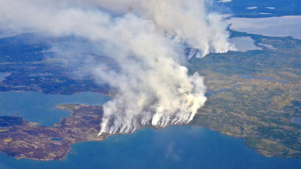 selva-amazonica-incendios-deforestación-UNAMGlobal