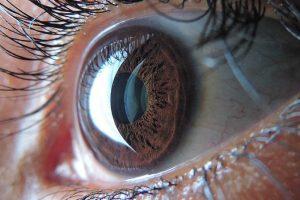 ojo-prueba-para-detectar-si-mienten-UNAMGlobal