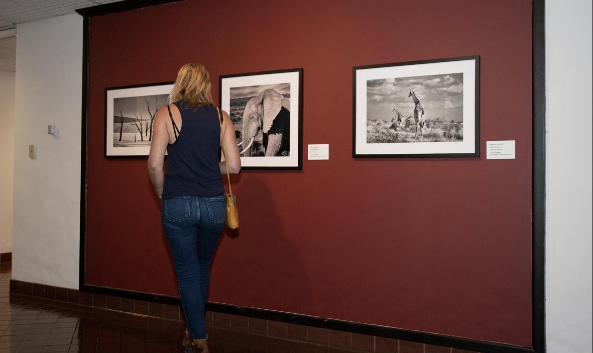 exposición10-fotográfica-Arriazola-UNAMSanAntonio-FOTOSEPTIEMBREUSA-UNAMGlobal