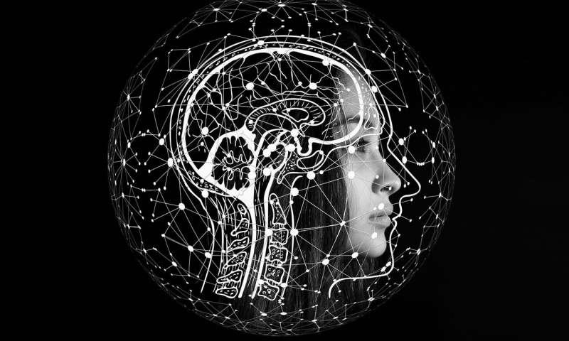 El desconocido y extraordinario mundo cerebral. Imagen obtenida de: https://unamglobal.unam.mx/algunos-datos-interesantes-del-cerebro/