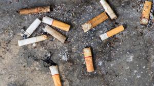 cigarros-colillas-colillatón-tóxicos-UNAMGlobal