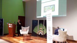 conferencia2-arte-prehispánico-deterioro-piezas-UNAMCostaRica-UNAMGlobal